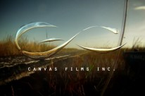 Canvas Films – Miami